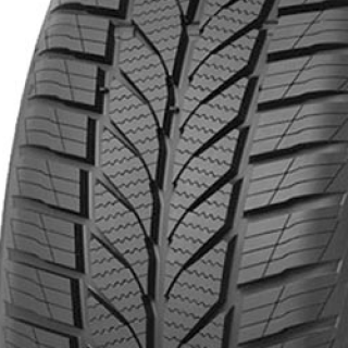 205/55 R16 91H Altimax A/S 365